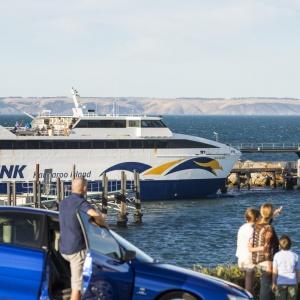 SeaLink Offer Free Travel to Kangaroo Island